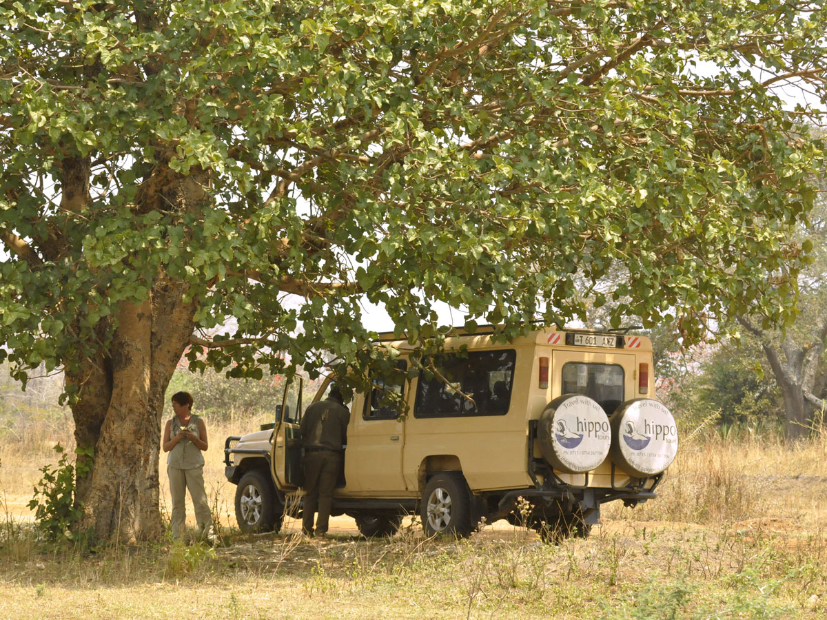 Hippo Tours & Safaris Gallery
